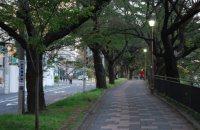 お堀端の遊歩道を進んで行く=小島昇撮影