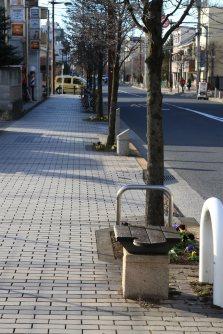 大学へ続く「アジア大学通り」には一人掛けの椅子が約50~100メートルごとに設置されていて、学生たちの通学路はお年寄りにもやさしい=佐伯信二撮影