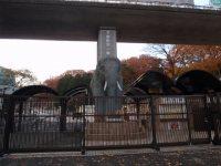 多摩動物公園の正門にはゾウのオブジェ
