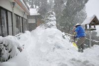 山上の集落は18日午前、膝の上まで雪が積もった=東京都青梅市の御岳山で2016年1月18日午前8時7分、山田麻未撮影