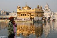 シーク教総本山の黄金寺院。入場するには、必ずバンダナなどで髪の毛を覆わなくてはならない=インド北西部アムリツァルで2015年10月9日午後4時45分、金子淳撮影