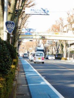 国道463号に戻る。自転車専用道部分は青いマーク=浜田和子撮影