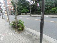 「東経大通り」と銘打たれた電柱=現代法学部2年、田中紘夢さん撮影