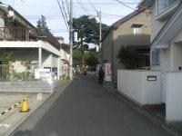 奥に正門が見えてくる=現代法学部2年、田中紘夢さん撮影