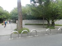 武蔵野の面影を残す正門付近。春には桜並木が学生を迎える=現代法学部2年、田中紘夢さん撮影