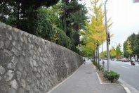 石垣の道を直進=2014年11月6日、垂水友里香撮影