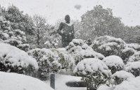 雪化粧した西郷隆盛像鹿児島市で2016年1月24日午後0時46分、杣谷健太撮影