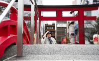 亀戸天神内の太鼓橋を渡る春風亭一之輔さん=東京都江東区で、小出洋平撮影