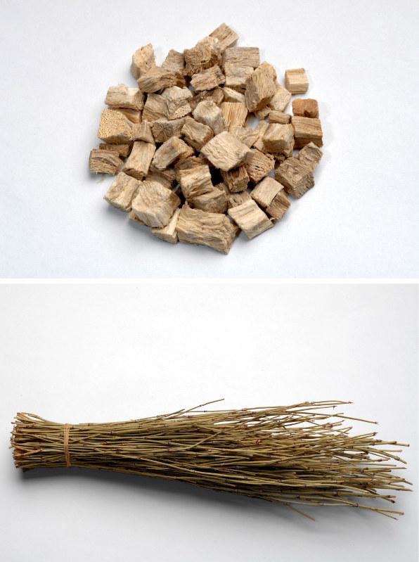 葛根(上)と麻黄(下)の生薬(漢方薬の材料になる天然由来の薬)=中村琢磨撮影