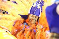 ブラジルにもさかなクンがいた=ブラジル・リオデジャネイロのカーニバル大会で2016年2月8日午前2時42分、朴鐘珠撮影