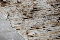 京成電鉄「寛永寺坂駅」跡。地上の元駅舎内の天井は、しっくいがはがれ、木材が見えていた=東京都台東区上野桜木で2016年2月2日午前11時18分、竹内紀臣撮影