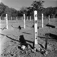 墓標・・・身元不明者の墓地=2011年5月3日、宮城県女川町(写真家・江成常夫)
