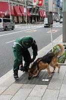 マラソンコース沿道をパトロールする警備犬=中央区で