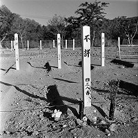 Graves for unidentified victims of the Great East Japan Earthquake disasters are seen in Onagawa, Miyagi Prefecture, on May 3, 2011. (Photo by Tsuneo Enari)