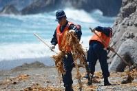 震災の行方不明者の手がかりを得るための捜索活動が続く。浜に打ち上げられた海草を拾い上げ手がかりがないか捜す宮古署員=宮古市田老の沢尻海岸で2015年7月11日、鬼山親芳撮影