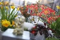 構内におかれた正月飾り。うっすらと雪が積もっていた=福島第1原発で2016年1月25日、小川昌宏撮影