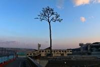 岩手県・陸前高田市 奇跡の一本松