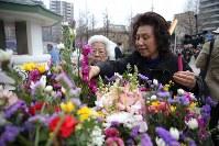 東京大空襲の犠牲者を追悼するため東京都慰霊堂で花を手向ける女性=東京都墨田区で2016年3月10日午前9時31分、後藤由耶撮影