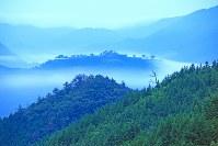 撮影ポイントは、竹田城跡を取り囲む標高400~600メートルの山の中。夜中、山を登っているときは、生き物は自分だけ。ラジオと鈴は必ず持って行く。クマの温かいフンや、木の枝の爪痕もよく見かける。でも、出合い頭でなければ襲ってこない=2012年6月21日午前4時9分、吉田利栄さん撮影