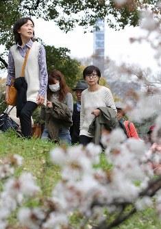 上着を手に花見を楽しむ人たち=東京都千代田区で2016年3月30日午前10時47分、後藤由耶撮影