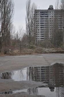 1986年に事故が起きたチェルノブイリ原発に隣接する人工都市プリピャチの廃虚。約5万人が暮らす豊かな「原発城下町」だったが、事故後はゴーストタウンに。街路樹が成長し、林のようだ=プリピャチ(ウクライナ北部)で2016年2月10日、真野森作撮影