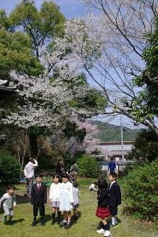 満開の淡墨桜を愛でる人たち=山口県岩国市で2016年4月2日、古賀亮至撮影