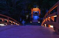 輪橋(手前)からライトアップされた鳥居などを望む=和歌山県かつらぎ町の丹生都比売神社で、松野和生撮影