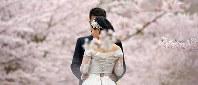 蹴上インクラインの桜を背景にウエディング写真を撮る中国人カップル=京都市左京区で2016年4月4日、小松雄介撮影