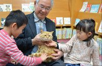 Library cat chief