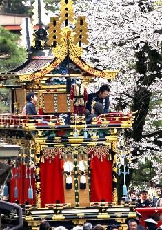 満開の桜の下、町を練り歩く豪華な祭り屋台==岐阜県高山市で2016年4月14日、山口政宣撮影