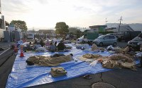 Earthquake evacuees who spent the night outdoors wrapped in blankets are seen in front of the town hall in Mashiki, Kumamoto Prefecture, on April 16, 2016. (Mainichi)