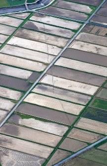田畑の中を走る断層とみられる亀裂=熊本県益城町で2016年4月16日午後4時29分、本社機「希望」から梅村直承撮影