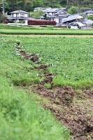 畑の表面に表れた断層とみられる亀裂=熊本県益城町で2016年4月16日、須賀川理撮影