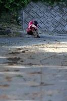 家の片付けに疲れ、道路わきで眠る女性=熊本県南阿蘇村で2016年4月17日午後4時8分、宮武祐希撮影
