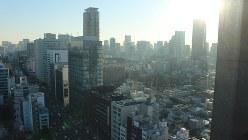 やっと日が昇り始めた東京・青山周辺の風景
