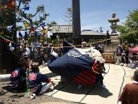 「お木曳き」終着点の「七里の渡し場跡」では、奉曳車が到着する頃合いを見計らい、先行していた長島の八幡獅子舞が、「伊勢国一の鳥居」の下に設営された「祝いの広場」で披露された。獅子の舞が「お木」を引き寄せるとされる。踏み込む足取りは軽やかであり、力強い
