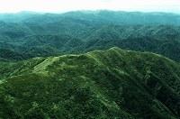 世界自然遺産・白神山地(1993年登録)