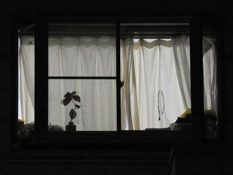 ヘルパーの詰め所から食器を片付ける音が聞こえる。ほとんどの利用者はこのマンションで年を越す