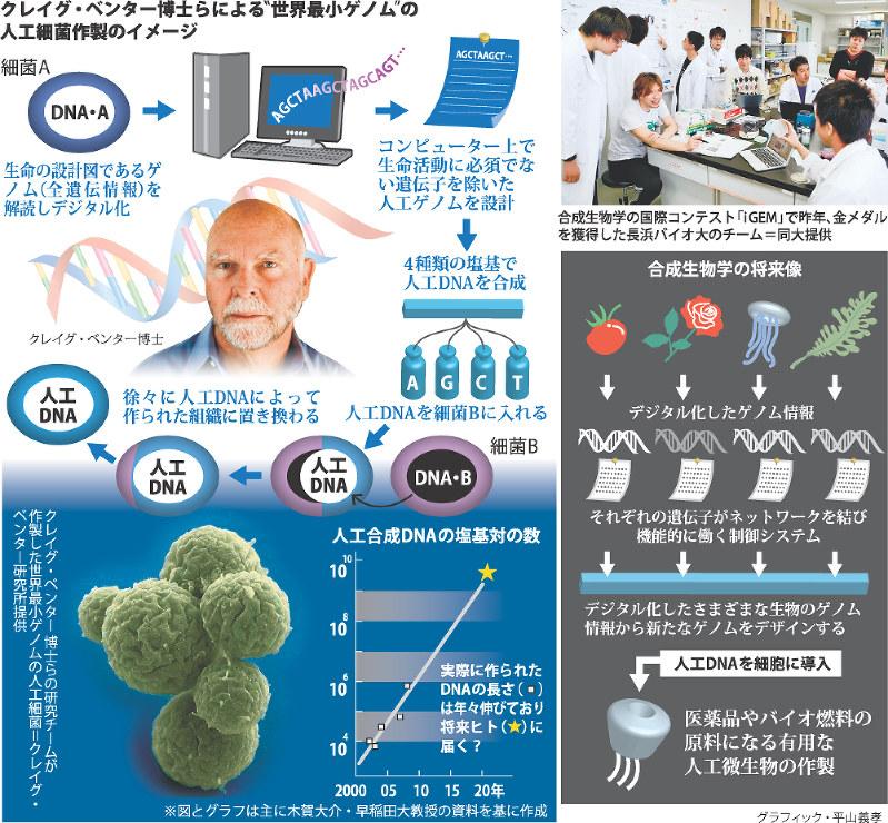 合成生物学へ 期待と不安 世界最小ゲノムの人工細菌作製成功
