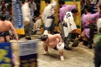 稀勢の里との取り組み前、懸賞金の旗が回る中、土俵上で腰を落とす照ノ富士=両国国技館で2016年5月19日、小出洋平撮影