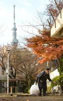公園の掃除をする林栄さん。奥は東京スカイツリー=東京都墨田区で、丸山博撮影
