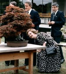 【1986年先進国首脳会議】第12回先進国首脳会議(東京サミット)2日目、参加首脳のワーキング・ランチ(昼食会)が迎賓館・和風別館で行われ、庭園に置かれた盆栽をかがみ込んで見るサッチャー英首相