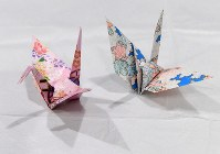 Origami cranes that U.S. President Barack Obama gave to local children are pictured at the Hiroshima Peace Memorial Museum on the evening of May 27, 2016. (Mainichi)