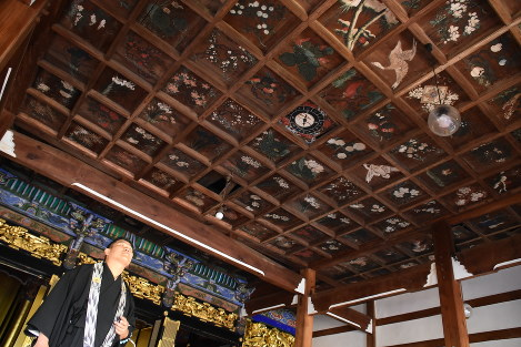 地震で本堂が傾き、雨漏りで損傷した浄信寺の天井絵を見上げる小田さん