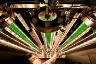 LEDの光で培養される藻類(そうるい)。水素や油を生み出すバイオ燃料として注目されている=大阪市住吉区の大阪市立大で2016年6月8日、貝塚太一撮影