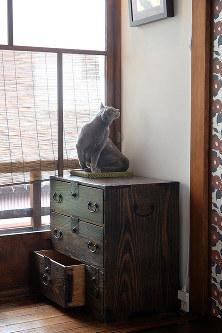 町家の雰囲気に猫が溶け込む=京都市上京区で、小松雄介撮影
