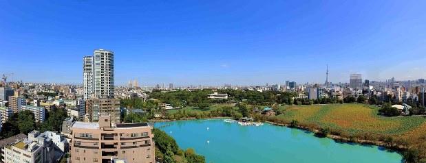 上野公園を見渡せる「Brillia Tower 上野池之端」からの眺望