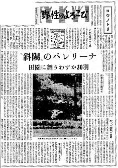 1957(昭和32)年9月1日朝刊社会面