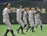 本番に備え、東京ドームでの練習試合前にキャッチボールする選手たち=文京区の東京ドームで