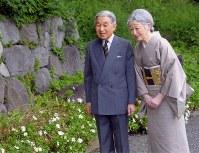 東日本大震災以前に岩手県大槌町から取り寄せた種から育ったハマギクを見る天皇、皇后両陛下=皇居・御所で2011年10月6日、宮内庁提供